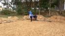 Beachvolleyballplatz Sanierung_26